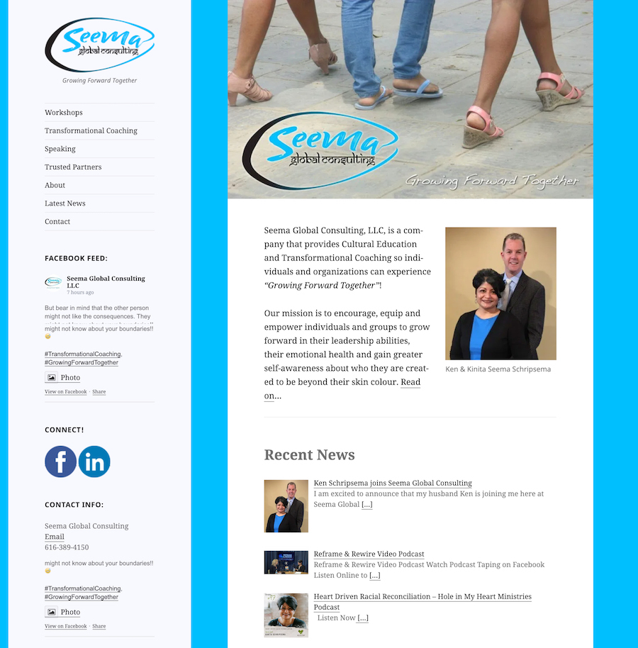seema global consulting website before